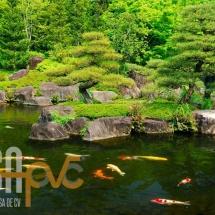 estanques2